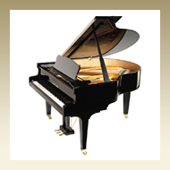 Steingraeber & Söhne Grand Piano - Model A-170
