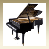Steingraeber & Söhne Grand Piano - Model C-212